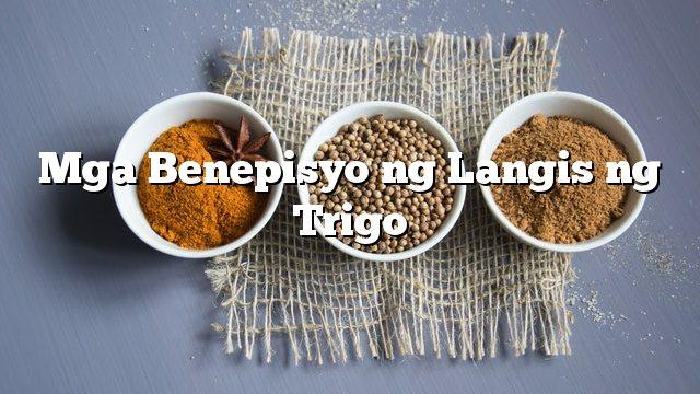 Mga Benepisyo ng Langis ng Trigo