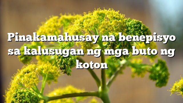 Pinakamahusay na benepisyo sa kalusugan ng mga buto ng koton